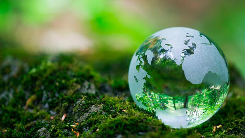 Năm 2009, Đại Hội đồng Liên hiệp quốc tuyên bố lấy ngày 22/4 là Ngày Quốc tế Mẹ trái đất (International Mother Earth Day).