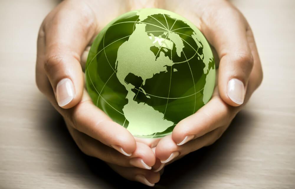 Top 10 lời khuyên cho ngày Trái Đất thật ý nghĩa bạn cần biết