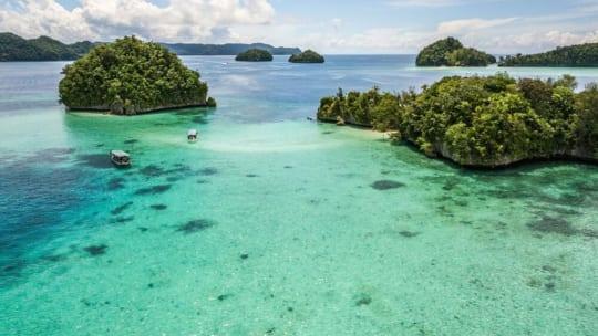 Ẩm thực Palau và những điều thú vị  từ Du lịch Palau