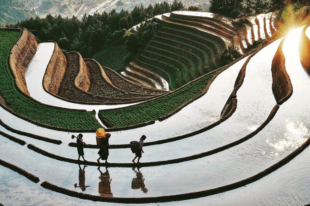 5 gợi ý giúp bạn khám phá ruộng bậc thang Mù Cang Chải thêm trọn vẹn